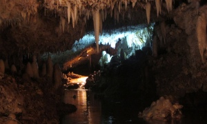 Harrisons Cave